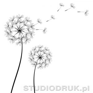 kwiaty 001