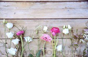 kwiaty 022