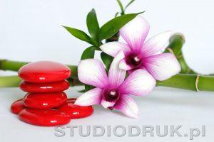 kwiaty 031