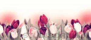 kwiaty 035
