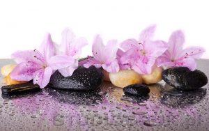 kwiaty 061