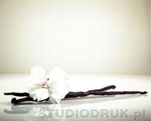 kwiaty 066