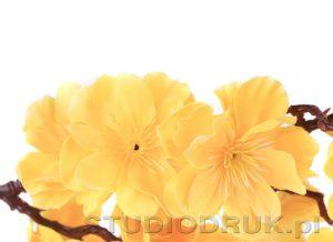kwiaty 075