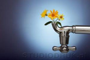 kwiaty 083