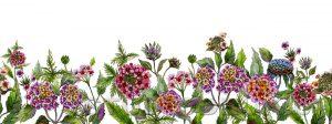 kwiaty 110
