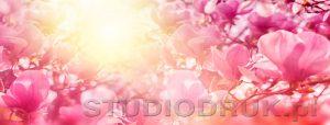 kwiaty 114