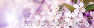 kwiaty 124