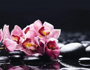 kwiaty 143