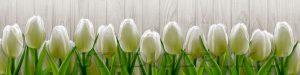 kwiaty 158