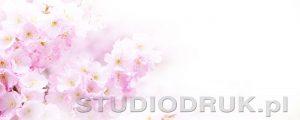 kwiaty 159