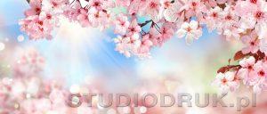 kwiaty 164