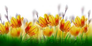 kwiaty 167