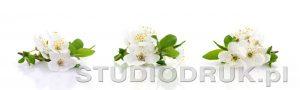 kwiaty 200
