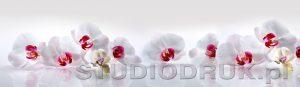 kwiaty 226