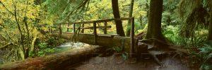 natura 092